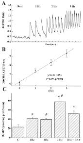 100 rpm to hz articles journal of neurophysiology a nema