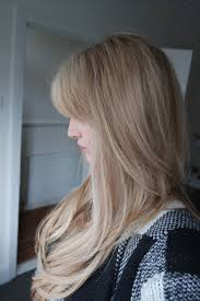 Lush Hair Extension Reviews by Redlands Hair Stylist Natural Mouse Dark Blonde Base With Light