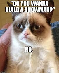 Do You Want To Build A Snowman Meme - grumpy cat meme imgflip