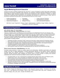 exle executive resume marketing account executive resume learn more about marketing