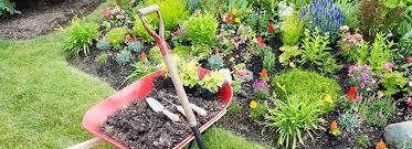dna landscaping u0026 nursery center