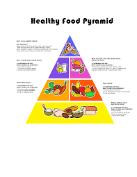 food guide pyramids charts and tips