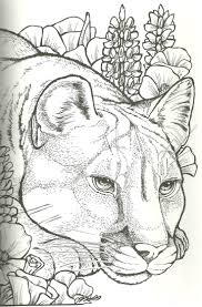 59 best my coloring pages images on pinterest colouring pages