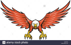 Bald Eagle On Flag Illustration Of An American Bald Eagle Flying Swooping Viewed From