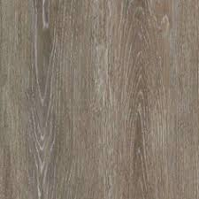 stainmaster 10 5 74 in x 47 74 in washed oak dove gray