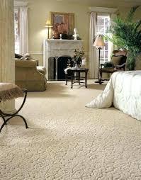 best carpet for bedroom best carpet for a bedroom pet my carpet best bedroom carpet