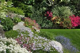 an introduction to rock gardening u2013 lawn and gardens net