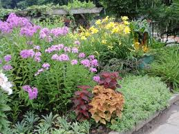 simple flower bed ideas best about garden plans on pinterest