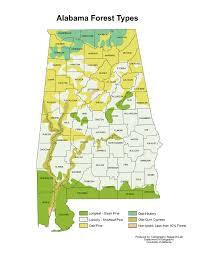 Alabama forest images Alabama maps forestry maps jpg