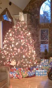 Fraser Christmas Tree Permit by Cool Tree Facts