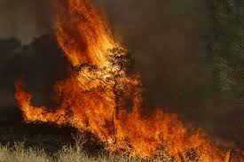 Wildfire Near Markleeville Ca california drought wildfires rage across parched state after four