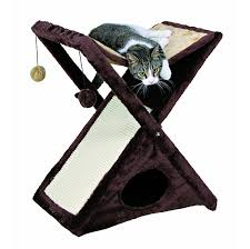 best cat hammocks for cute kitties reviews and tips for choosing