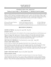 Risk Management Resumes Sample Competencies On Resume