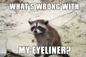 Raccoon Excellent Meme - raccoon eyeliner meme meme on imgur