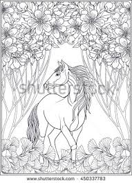horse book stock images royalty free images u0026 vectors shutterstock