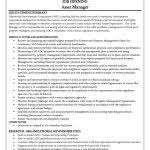 Great Resume Summary Examples Of Resumes 87 Terrific Example A Great Resume Teacher