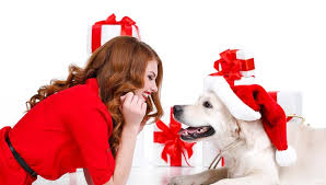 10 best christmas gifts for dog parents u2013 top dog tips
