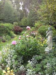 beautiful garden in wis celebrates native plants and finds