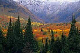 New Hampshire forest images 10 best fall color forest views in the us and canada jpg