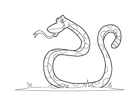 snake print color snakes coloring pages snake