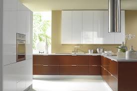 Laminate Kitchen Cabinets Kitchen Elegant Laminate Kitchen Cabinets Frameless Laminate