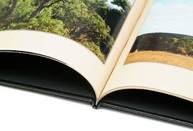 inexpensive photo albums digital pro lab quickbook albums
