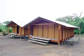 company building inexpensive homes with lvl and wood plastic