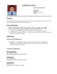 executive curriculum vitae stunning objective and summer internship for advertising account