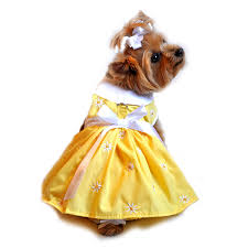 endearing easter fashions for your pup at doggie design