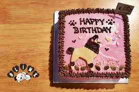 all birthday cake u2013 blink pets bakery