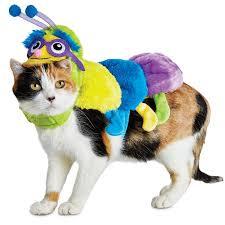 halloween cat costumes preciouspetstores com