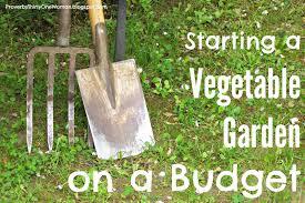 vegetable garden sun requirements proverbs 31 woman