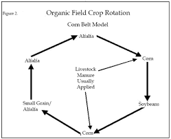 organic crop production overview attra national sustainable