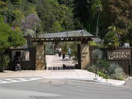 Berkeley Botanical Gardens Uc Botanical Garden At Berkeley All You Need To Before You