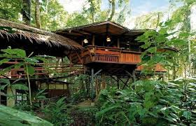 eco friendly houses information stay in an eco friendly tree house