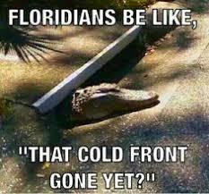 Funny Florida Memes - florida memes s photo pinteres
