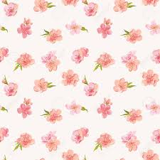 shabby chic flowers blossom flowers background seamless floral shabby chic