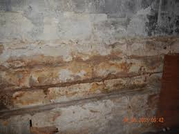 pdf documents 7 oaks home inspection