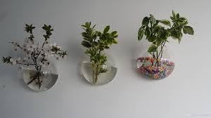 air plant bubble terrariumindoor wall planterwall glass fish bowl