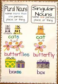 best 20 plural nouns ideas on pinterest u2014no signup required