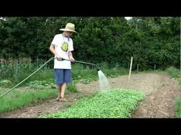 agriculture projects for students tutorial center s successful youth agriculture project gardening