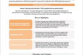 Resume Summary Statement Examples Branding Statement Resume Examples Resume Profile Statement