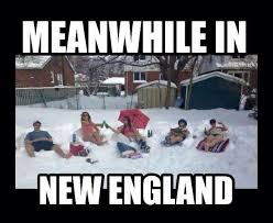 England Memes - 286 best ugh winter in new england images on pinterest england