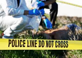necessary steps to becoming a crime analyst