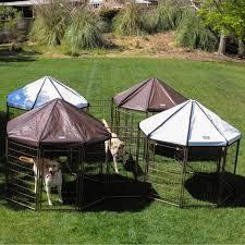 amazon com advantek the original pet gazebo medium dog run