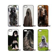afghan hound ottawa online buy wholesale afghan hound black from china afghan hound
