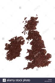 A Map Of England by Map Of England Scotland And Ireland Made Of Brown Fresh Roasted