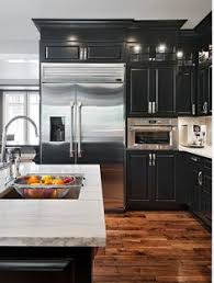 Kitchen Colors Dark Cabinets 15 Beautiful Black Kitchens The New Kitchen Color Black