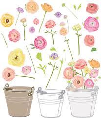 Art Garden Ranunculus Vector Garden Party Clip Art