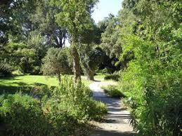 Quail Botanical Gardens Free Tuesday San Diego Botanic Garden Quail Botanic Garden Http Www